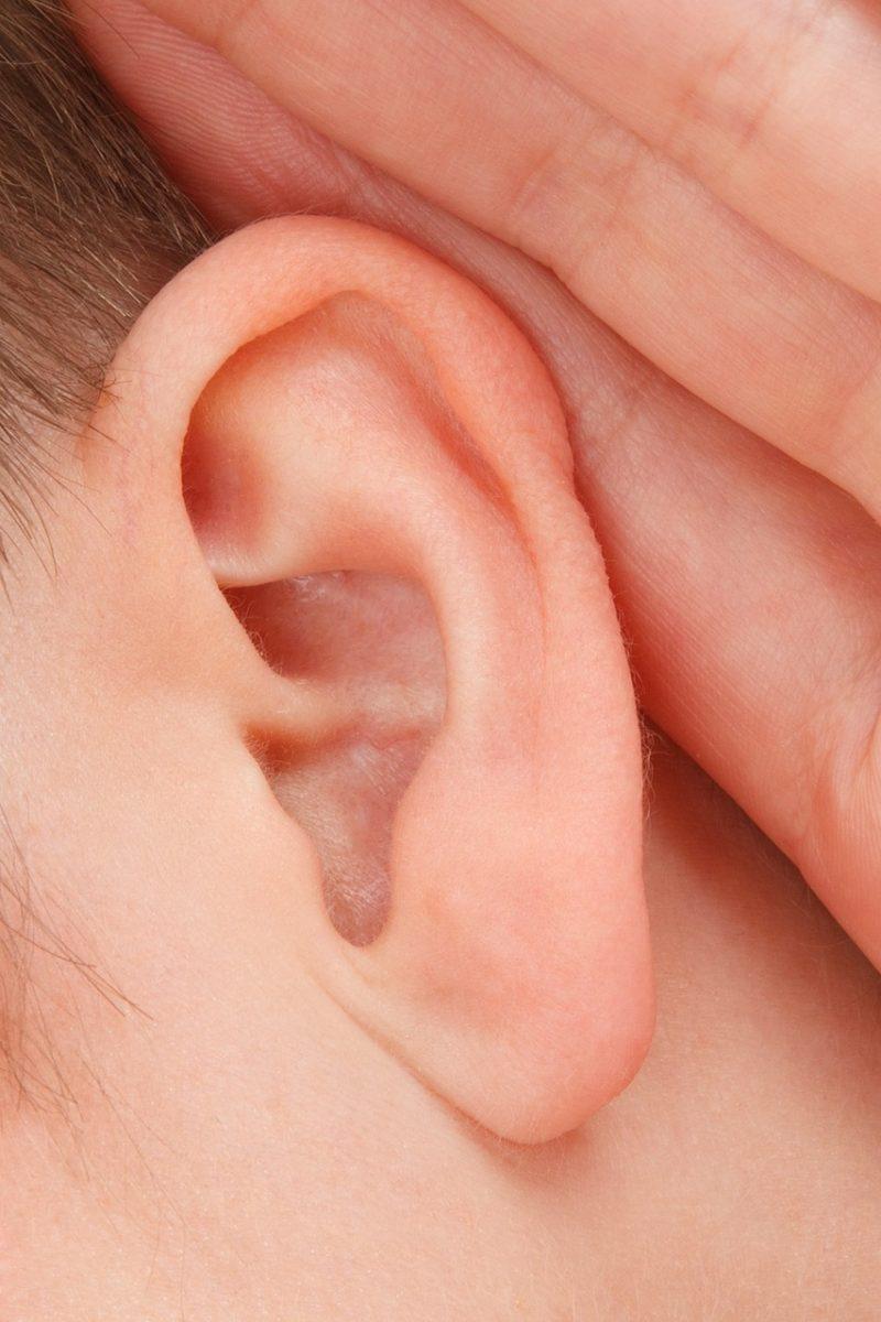 耳のアップ